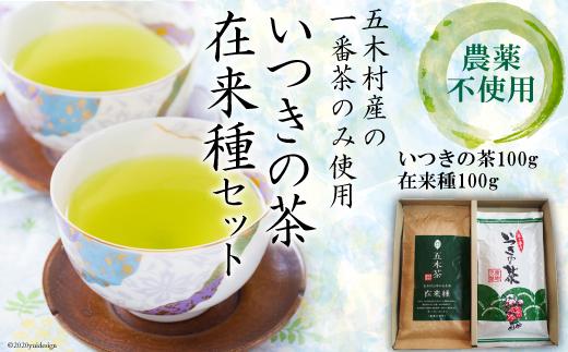 No.010 いつきの茶・在来種セット / お茶 緑茶 一番茶 農薬不使用 熊本県 特産