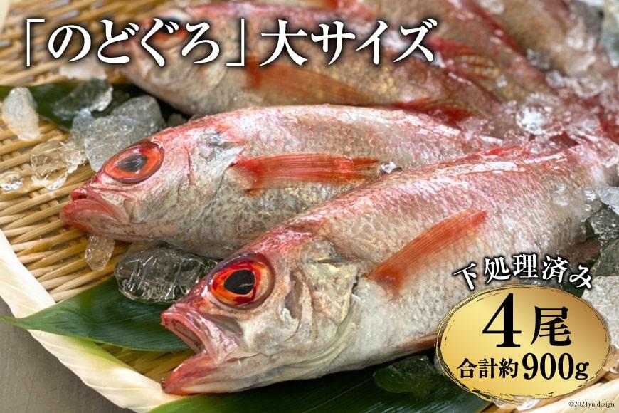 AF090「のどぐろ」大サイズ(200~250g) 4尾 <煮付け・塩焼き用>