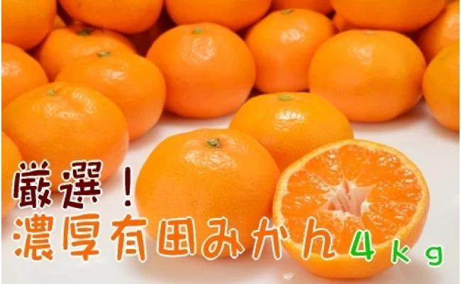 AB7004_厳選!濃厚有田みかん【サイズ混合】 4kg