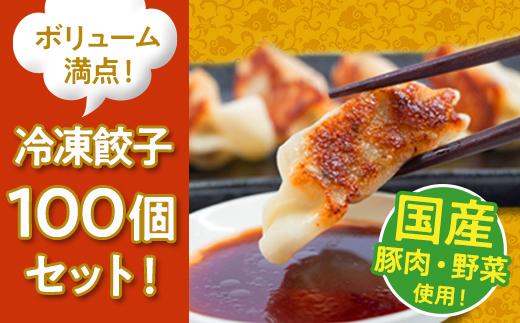 国産豚肉!国産野菜使用!ボリューム満点!冷凍餃子100個セット