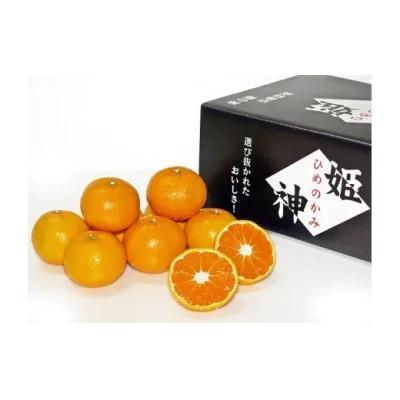 旬のミカンをお届け!JAむなかた柑橘ブランド「姫の神」3kg_PA0281