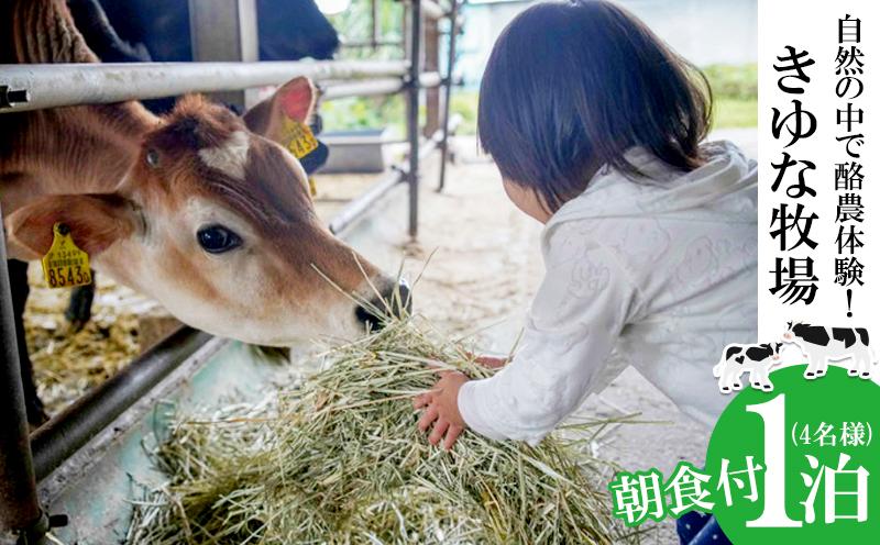自然の中で酪農&バター作り体験!きゆな牧場 1泊朝食付き(4名様)