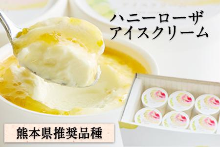ハニーローザアイスクリーム 120ml×8個《30日以内に順次出荷(土日祝除く)》熊本県 玉東町 ぷらっとぎょくとう ハニーローザ アイスクリーム すもも スイーツ お菓子