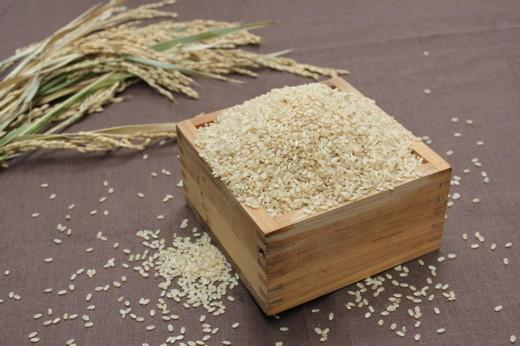 GF14:令和3年度淡路島産 合鴨農法米 鴨の恵み 玄米(キヌヒカリ)  5kg
