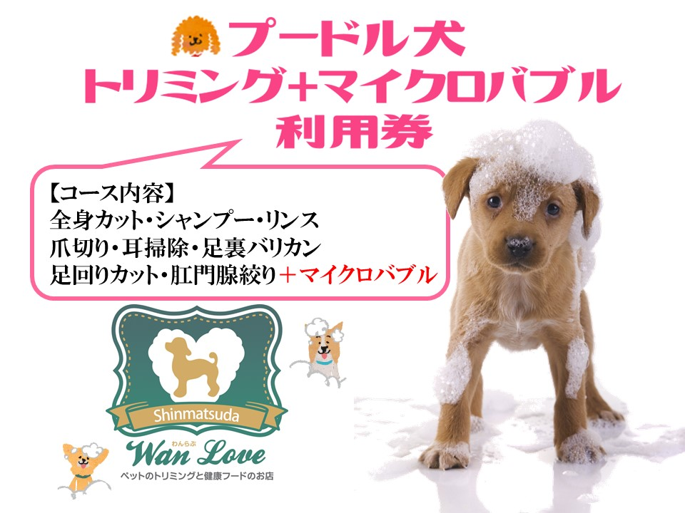 【プードル犬】トリミング+マイクロバブル利用券(1回)