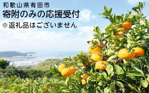 和歌山県有田市 寄附のみの応援受付 (返礼品なし) 5,000円