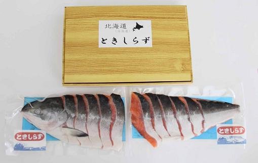 41 時鮭ときしらず(船上活〆半身)25,000円