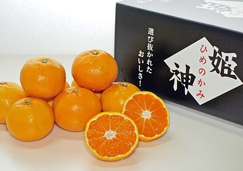 旬のミカンをお届け!JAむなかた柑橘ブランド【姫の神(不知火/しらぬい)】約5kg(2021年3月~4月中お届け)_PA0571