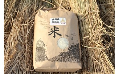 009-13秦野の米(はるみ)