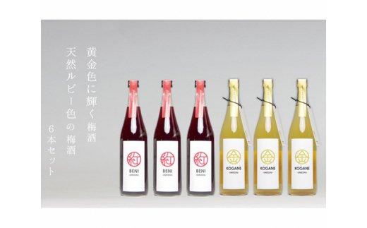 No.239 梅酒「KOGANE」「BENI」720ml 6本セット / お酒 うめ酒 芳醇 群馬県