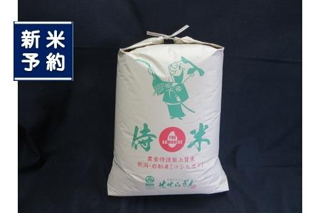 【新米受付】NC4039 岩船米 侍米 昔コシヒカリ玄米24kg