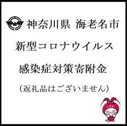 9999-999 神奈川県 海老名市 新型コロナウイルス感染症対策寄附金(返礼品はございません)