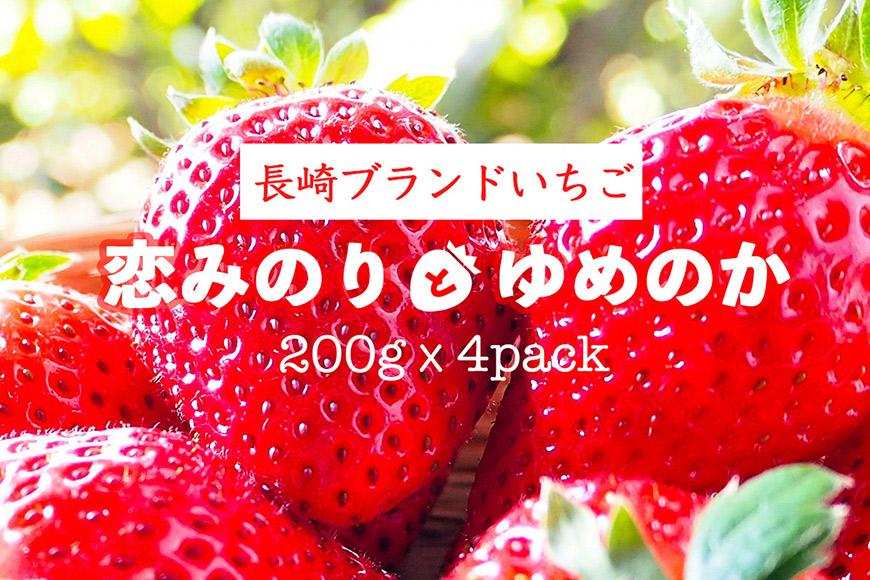 AE133【期間限定】野菜ソムリエselection 特選いちご「恋みのり」「ゆめのか」(2Lサイズ・各2パック)