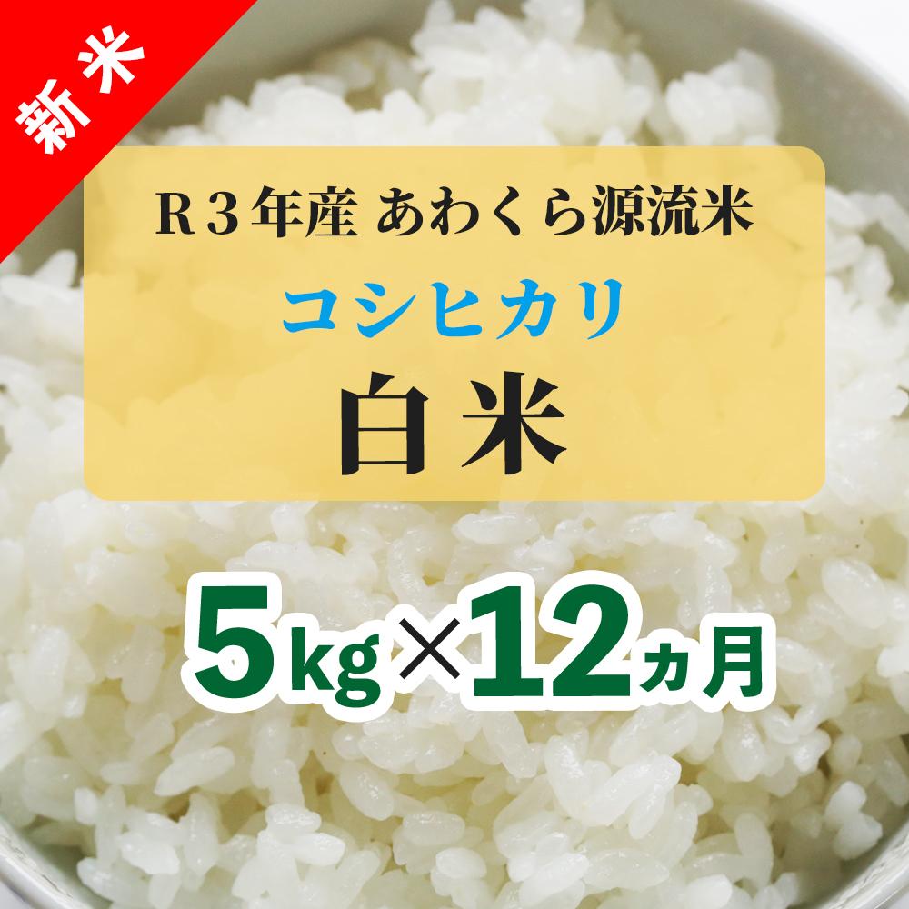 W81<令和3年産 新米定期便> あわくら源流米 コシヒカリ 白米5kg×12