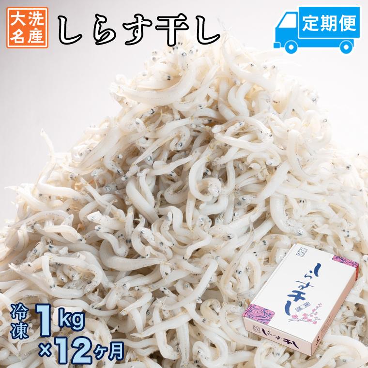 定期便 しらす干し (1kg×12か月) 天然 ふっくら 大洗 名産 しらす シラス 魚 さかな 魚介 離乳食
