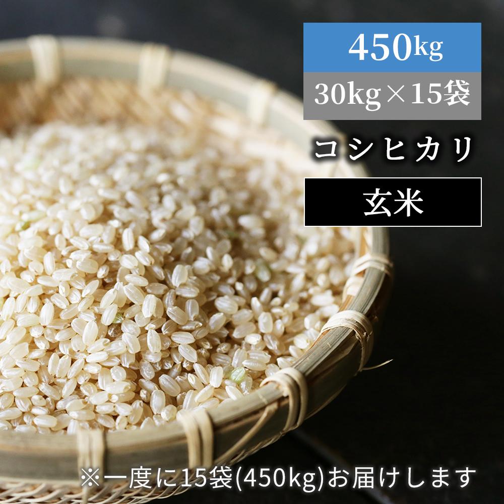 <450kgお届け>W49 あわくら源流米 コシヒカリ玄米30kg×15袋
