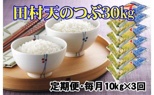 TD6-3【定期便】田村市産天のつぶ30㎏(10kgずつ3回配送)【令和2年産】