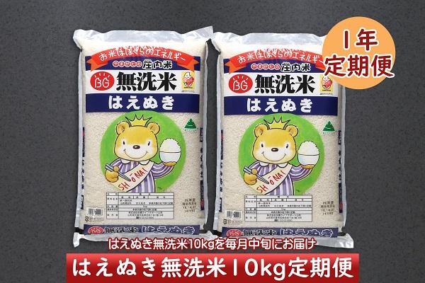 <3月開始>庄内米1年定期便!はえぬき無洗米10kg(入金期限:2021.2.25)