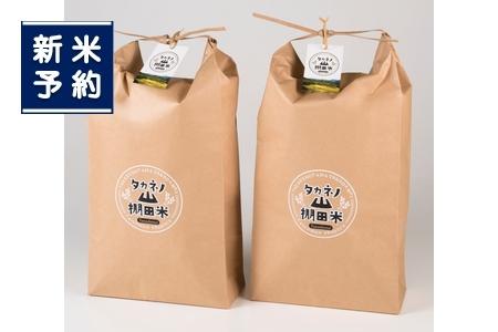 【新米受付】NF4009 岩船産 棚田米コシヒカリ10kg×2 6ヶ月お届け