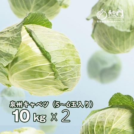 010B343 射手矢さんちの泉州キャベツ 20kg