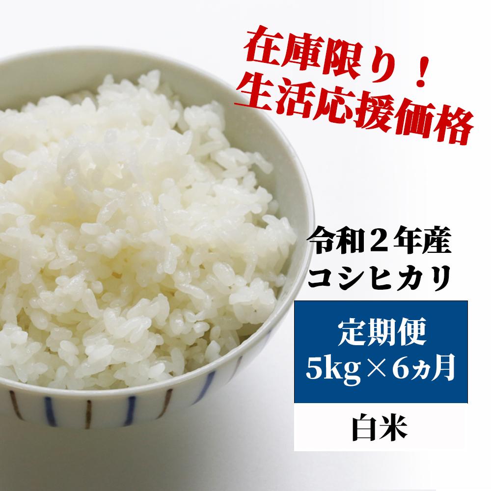 <令和2年産>K28定期便 あわくら源流米 コシヒカリ 白米5kg×6