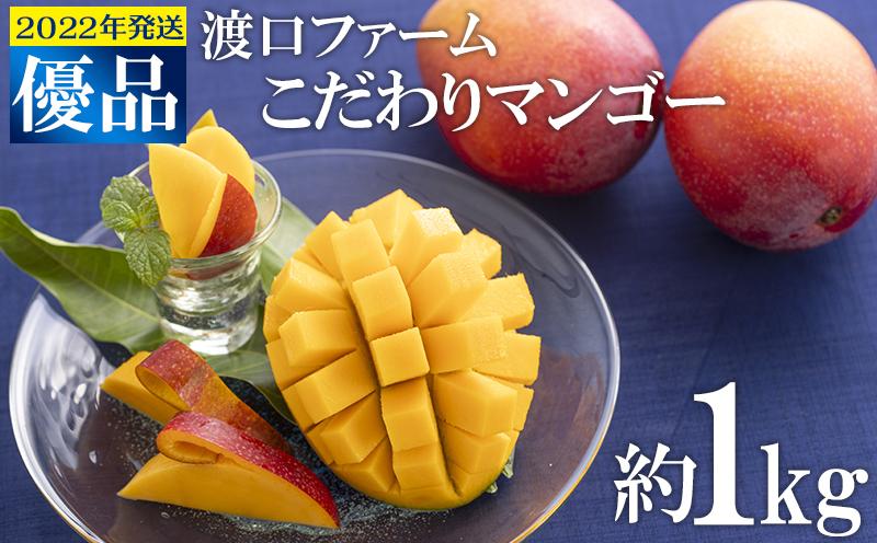 【2022年発送】渡口ファームのこだわりマンゴー約1kg〈優品〉