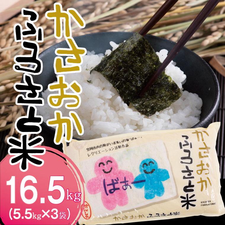 【11月発送】令和3年産16.5kg「備中笠岡ふるさと米」 米農家応援!