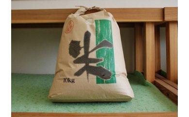 013-001 斑鳩産ヒノヒカリ10Kg(白米)