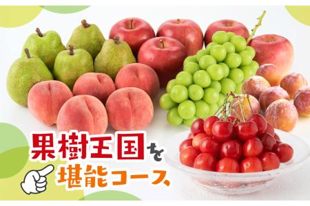 果樹王国を堪能コース(2021年6月中旬~下旬 さくらんぼからスタート)【定期便】 さくらんぼ 桃 すもも シャインマスカット ラ・フランス りんご P-1503