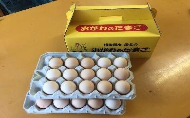 相模原市田名のおがわのたまご ピンク卵(Lサイズ)30個