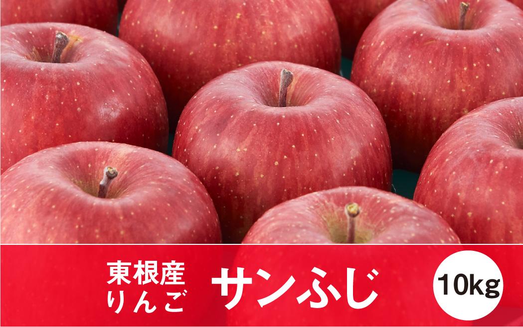 りんご「サンふじ」10kg JA提供(2021年11月下旬~12月中旬送付) P-1543