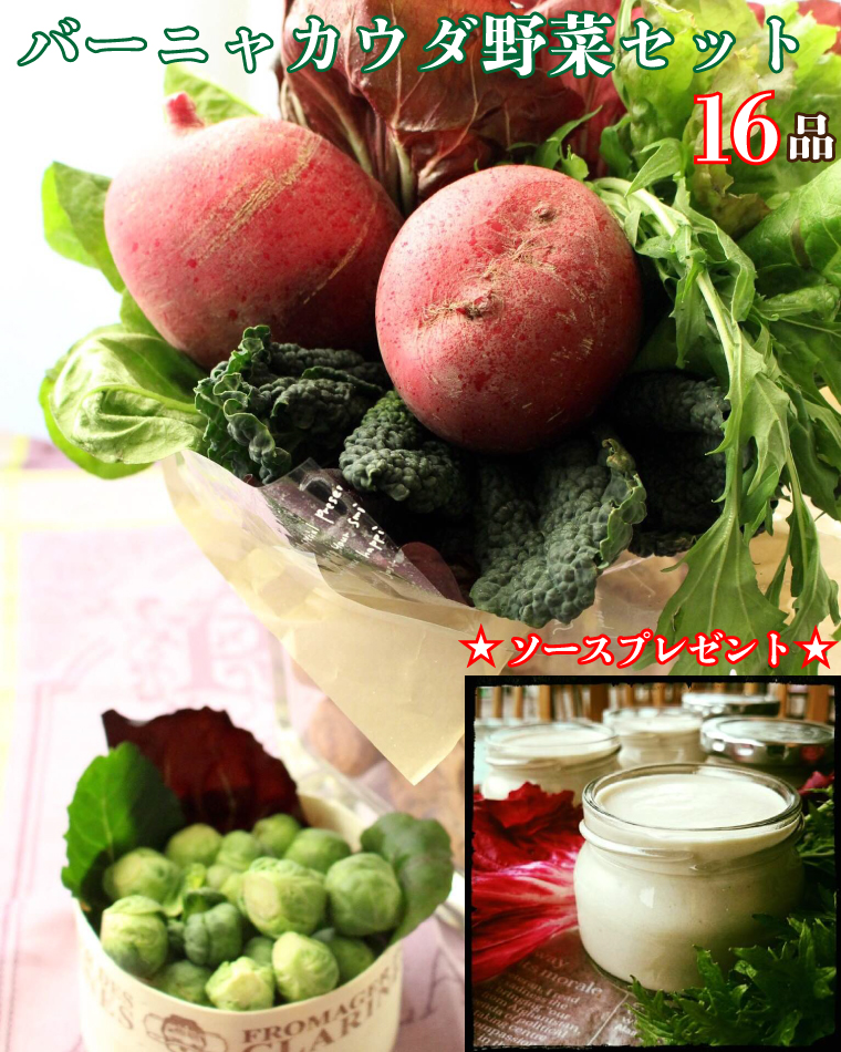 BG157_バーニャカウダ野菜セット(16品)ソースプレゼント★