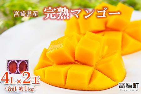 <宮崎県産 完熟マンゴー 4L×2玉(合計 約1kg)>2021年5月中旬から7月中旬迄に順次出荷【c793_dm】