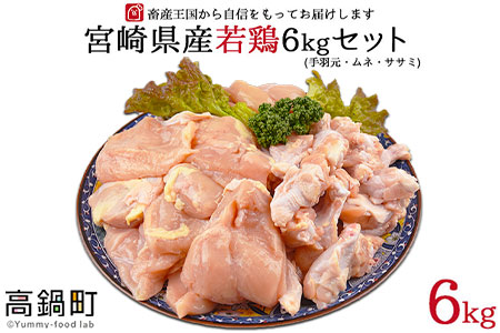 <宮崎県産若鶏3種 計6kgセット>翌月末迄に順次出荷【c504_hn_x1】