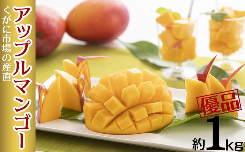 【2021年発送】くがに市場の産直アップルマンゴー約1kg【優品】