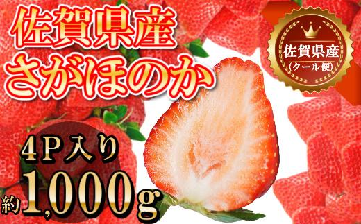DY038_佐賀県産さがほのか合計約1㎏ 250g×4P 苺 いちご イチゴ