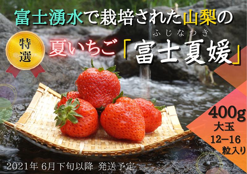 【湧水のミネラルたっぷり!山梨の夏いちご】富士夏媛 大粒12〜16粒入り(400g〜)