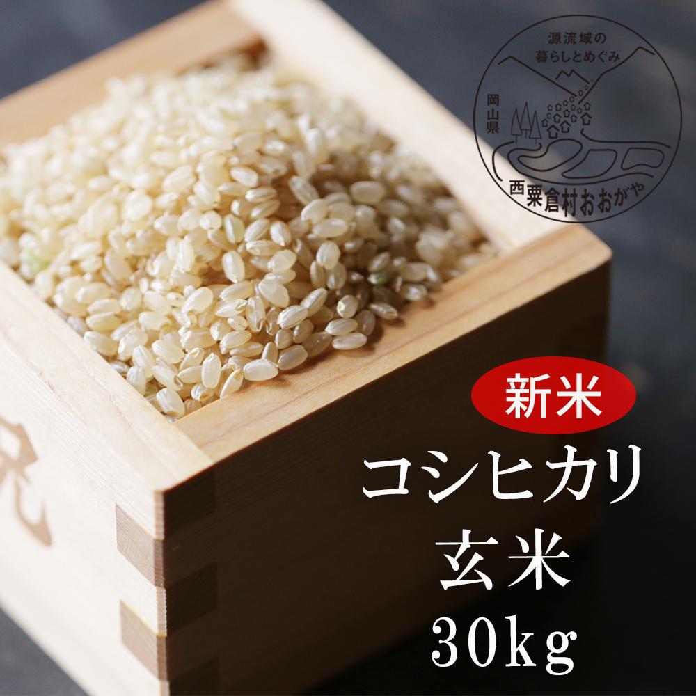 <令和3年産・新米>G31 おおがや米 コシヒカリ 玄米30kg