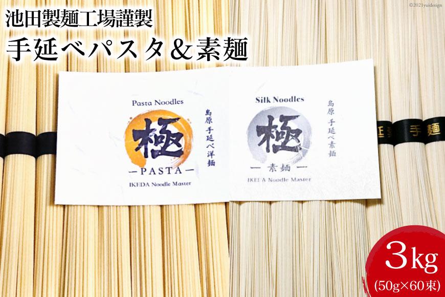 池田製麺工場 手延べパスタ&素麺 3kg(各50g×30束)