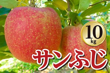 【2609-0115】【期間限定】矢板特産 樹上完熟もぎたてりんご(サンふじ)10kg