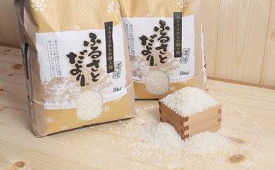令和2年産 近江米 秋の詩【10kg(5Kg×2袋)】環境こだわり米【AB60SM】