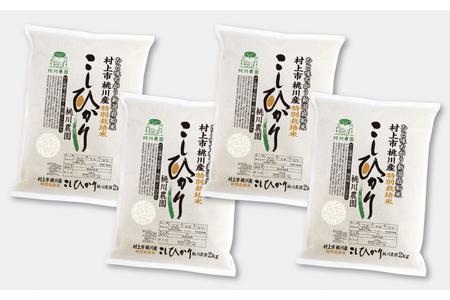 A4092 村上市桃川産 特別栽培コシヒカリ8kg