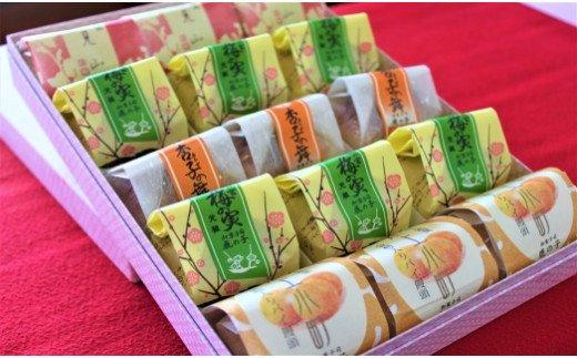 10-46 和菓子詰合せ 鹿の子の「いろどり」(4種15個)