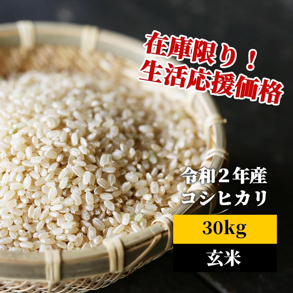 <令和2年産>K4 あわくら源流米 コシヒカリ 玄米30kg