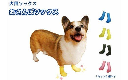 犬用ソックス 「おさんぽソックス」[030M07]