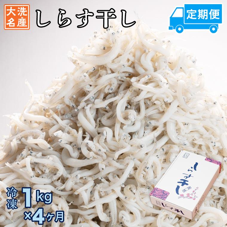定期便 しらす干し (1kg×4か月) 天然 ふっくら 大洗 名産 しらす シラス 魚 さかな 魚介 離乳食