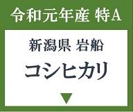 特A 新潟県岩船「コシヒカリ」