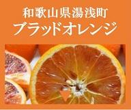 和歌山県湯浅町 ブラッドオレンジ