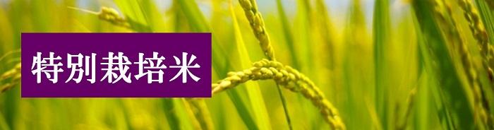 化学肥料や農薬を削減した「特別栽培米」