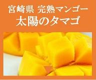 宮崎県 完熟マンゴー 太陽のタマゴ